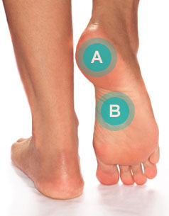 852e7c4042 Inflammation of this tissue is called plantar fasciitis and most people  typically have pain on the bottom of their foot and find the first steps of  the day ...