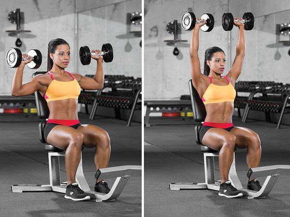 Seated Shoulder Press